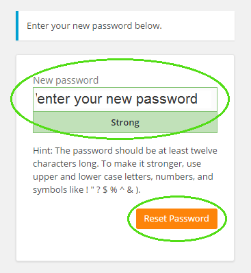 Screenshot of where to enter your chosen password