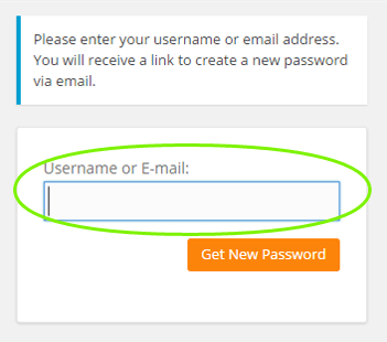 Screenshot of password reset form