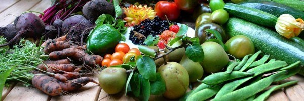 Freshly harvested fruits and vegetables