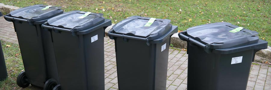 A row of residential garbage bins.
