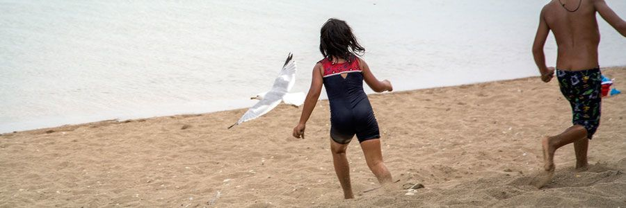 Two kids running after a seagull on the sand in Winnipeg Beach, Manitoba