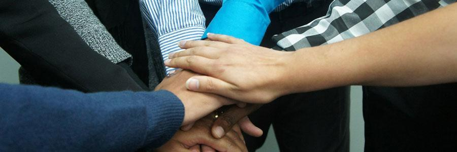 A bunch of hands reaching in together