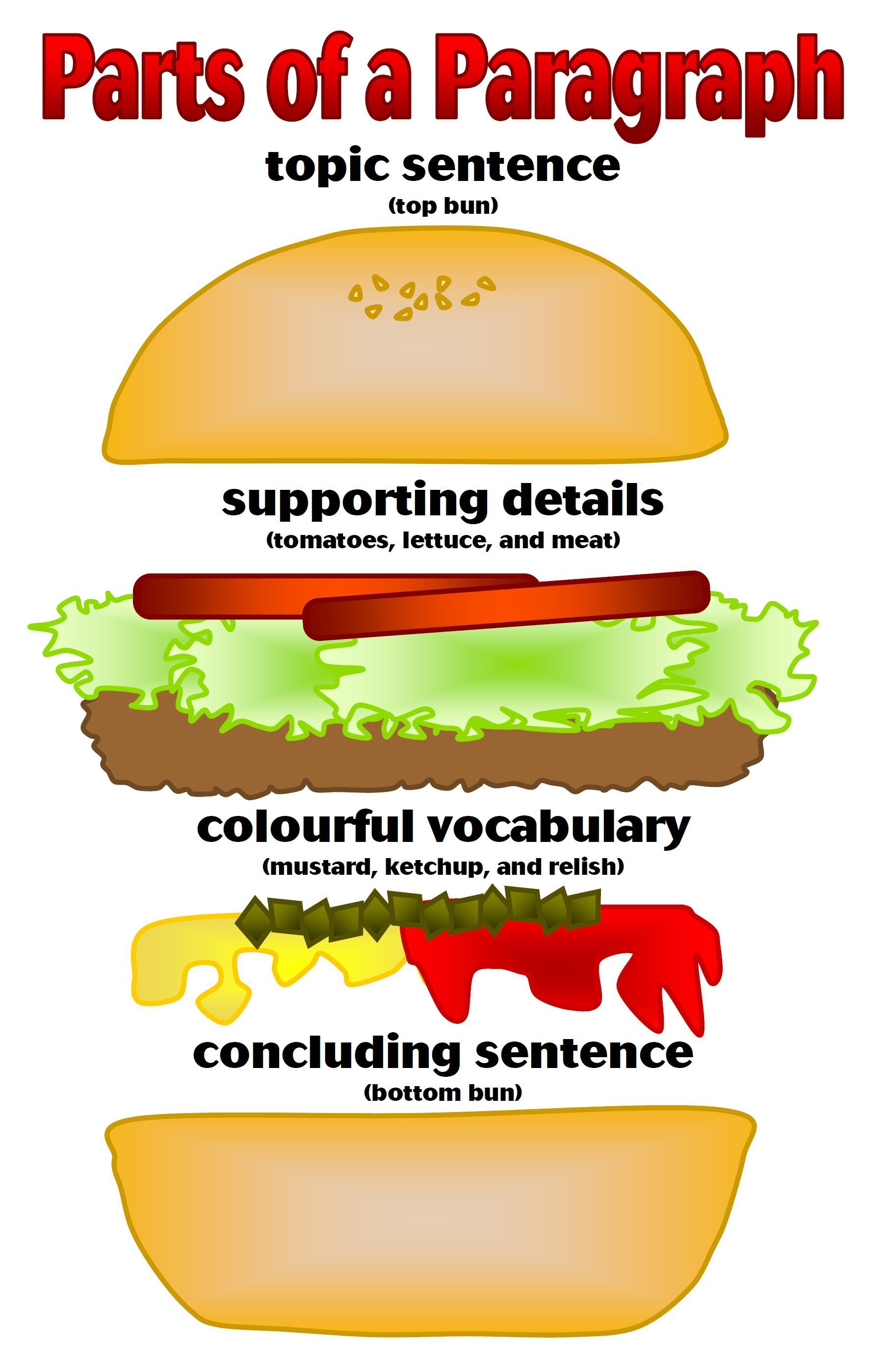Parts of a paragraph illustrated as parts of a hamburger, with the supporting details as the tomatoes, lettuce and meat, colourful vocabulary as the mustard, ketchup and relish, concluding sentence as the bottom bun.