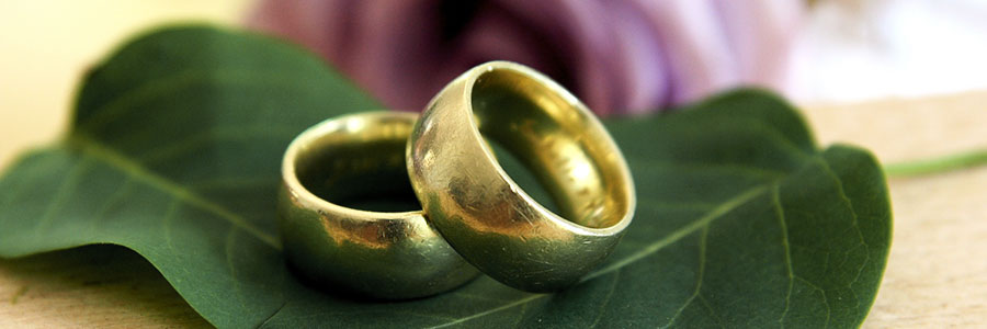 Two wedding bands on a leaf.