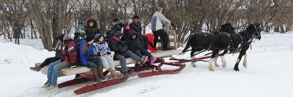 Sleigh ride at Festival du Voyageur. Whittier Park, St. Boniface, Winnipeg, Manitoba, Canada