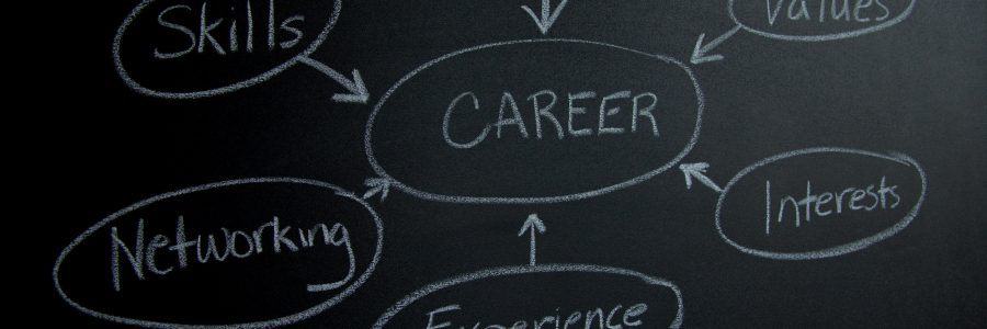blackboard with with the words education, skills, values,interests, experience and networking pointing to career