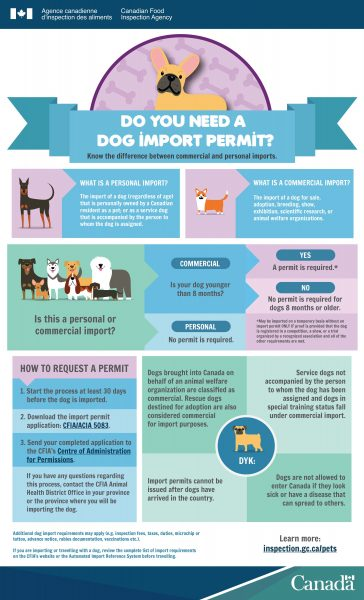 """""""Do you need a dog permit?"""" infographic"""