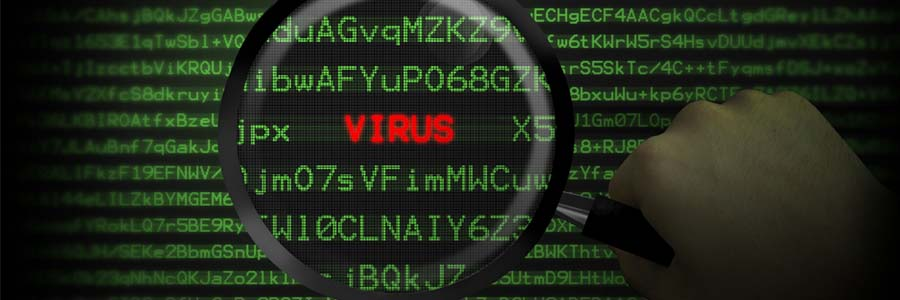 Virus detected within computer code