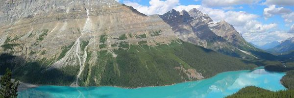 Sweeping shot of Peyto Lake in Alberta